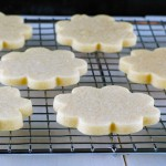 Delicious Fall Cookie Recipes
