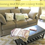 sunny, bright, living room, reveal