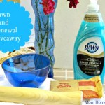 Simplify Your Summer with Dawn Hand Renewal