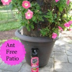 Summer Patio: Hot Shot Insecticides