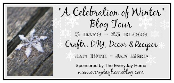 celebration of winter blog tour