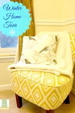 celebration of winter, blog tour