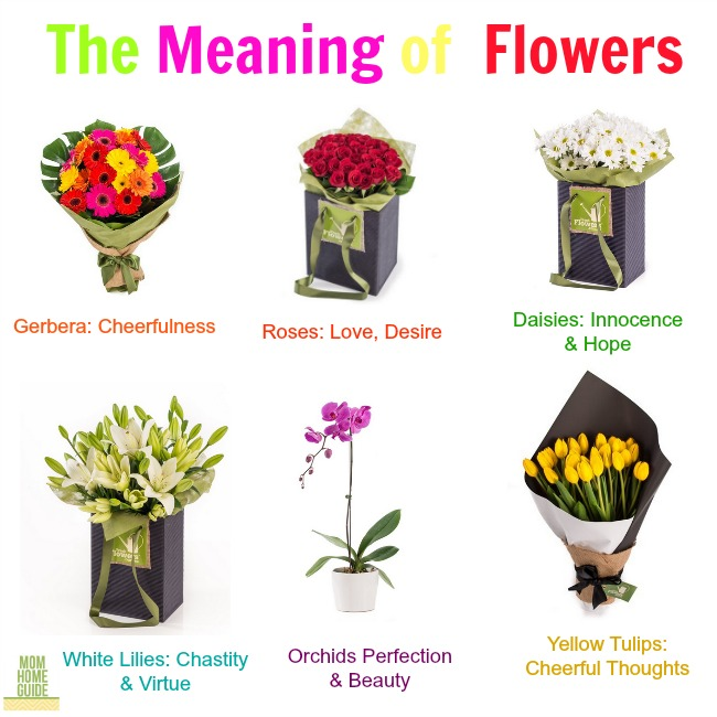 Flower Meanings: The Meaning Of Giving Flowers