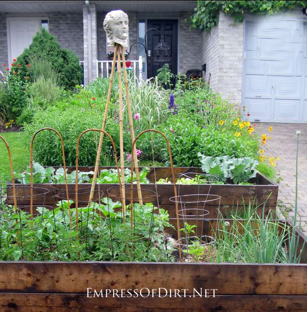 edible front yard garden