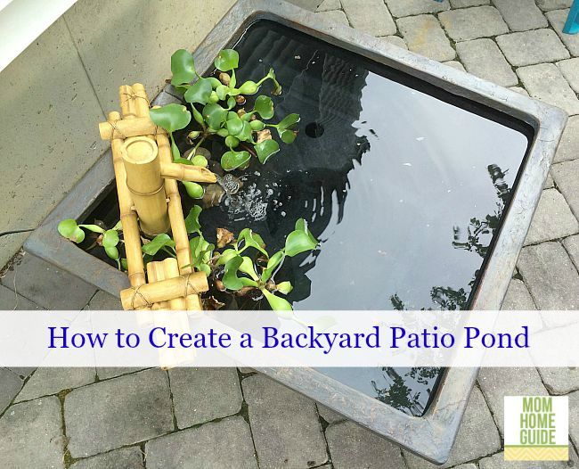 Create a patio pond for your backyard!