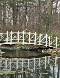 New Jersey Day Trip: Sayen Gardens