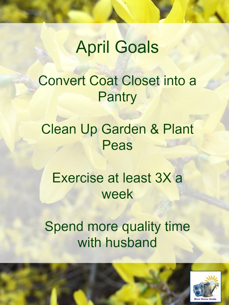 My april monthly goals -- a list of the goals I hope to achieve this month