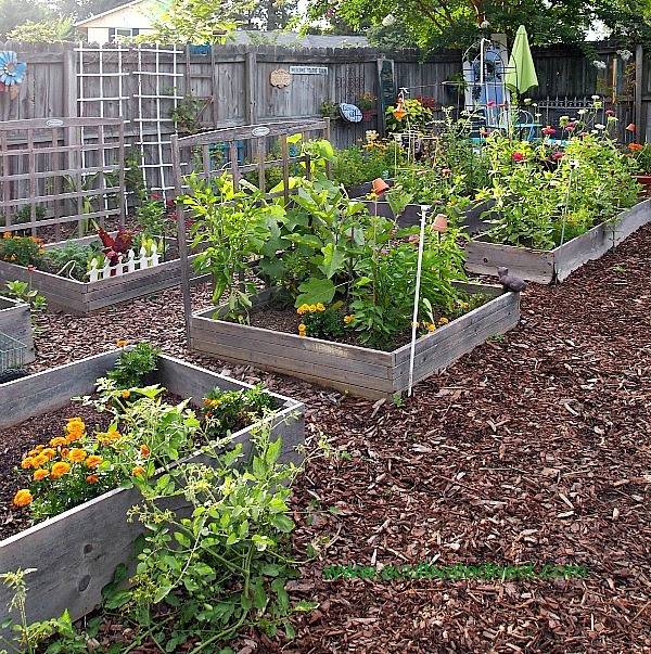 Tips for starting a spring garden!