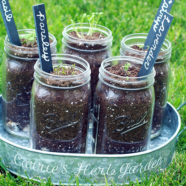 DIY herb garden with personalized garden markers in a personalized tin