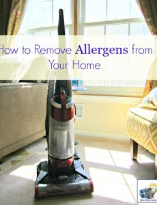 cleaning and vacuuming tips to rid a home of allergens