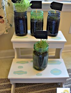 DIY plant stand with herbs planted in mason jars