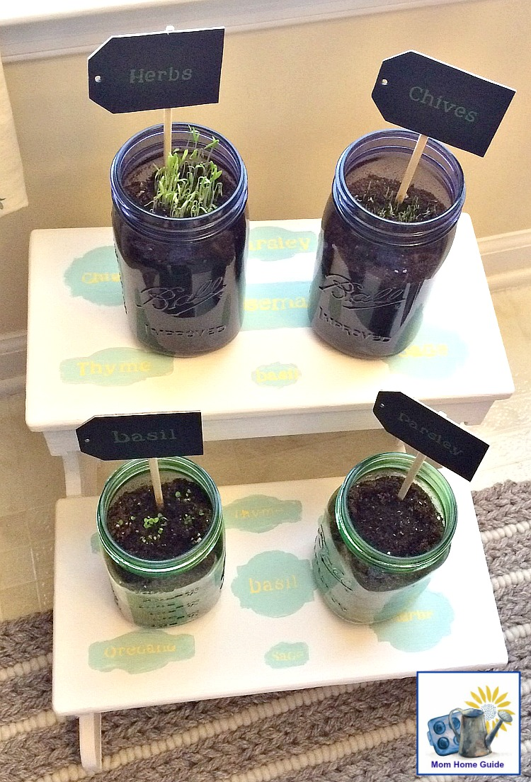 DIY stenciled kitchen herb stand with mason jars