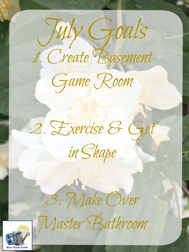 I like setting personal goals that are relatively easy to achieve each month. Check out my personal goals for July!
