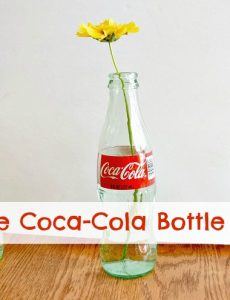 Coca-Cola bottles make really cute and sweet bud vases for summer blooms