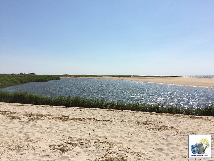 Barrier beach at Audubon Wildlife Preserve in Wellfleet, Mass.