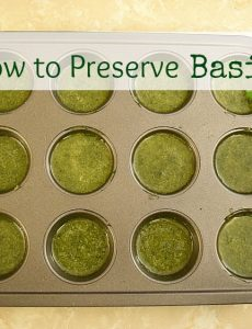 Preserving Herbs & Basil Garlic Bread — Taste Creations Blog Hop