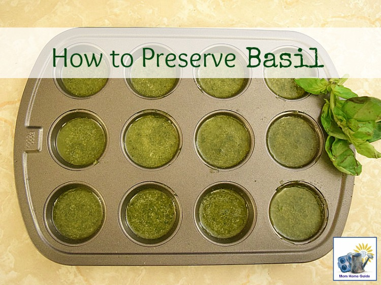 how to freeze basil in olive oil