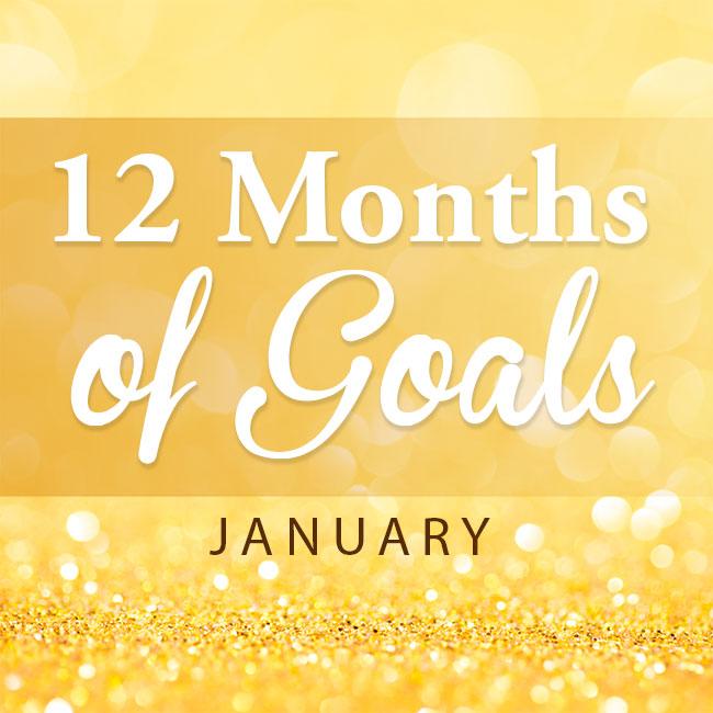 12 months goals -- January
