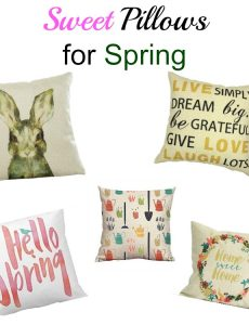 I love all these inexpensive pillows from Amazon for spring