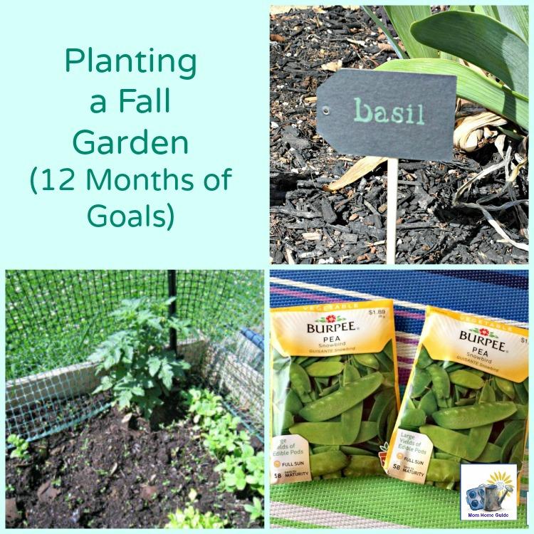 August goal -- planting a fall garden