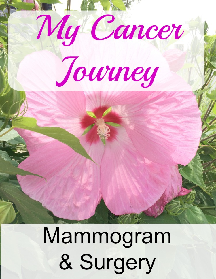 My Cancer Journey - a positive mammogram and a lumpectomy