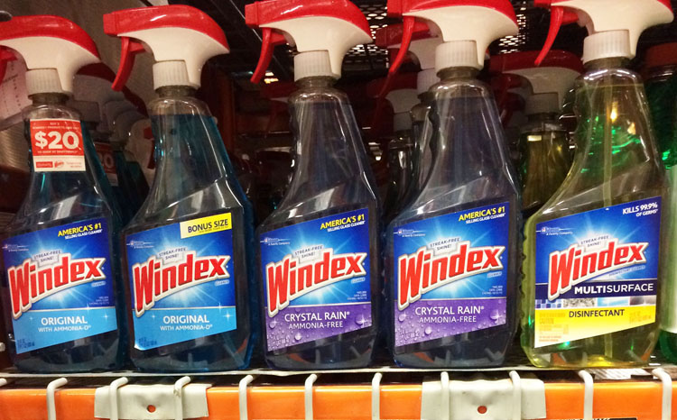 Windex at Home Depot
