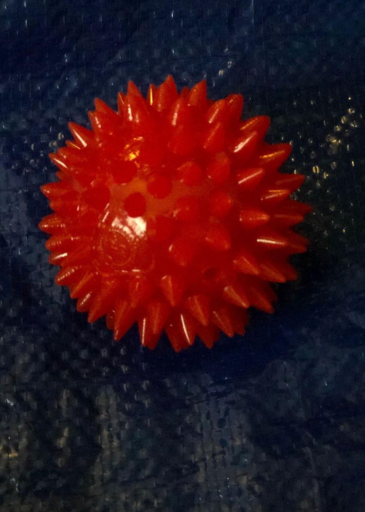 PupBox's Gnawsome Squeak Ball