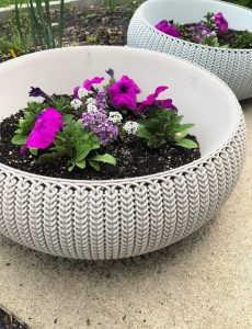 Easy Care Summer Container Gardens — Pinterest Challenge Blog Hop