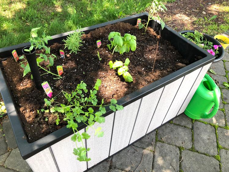 tall raised patio planter