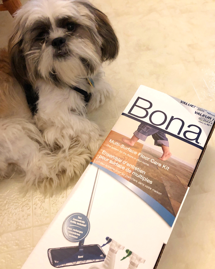bona floor kit and Shih Tzu puppy