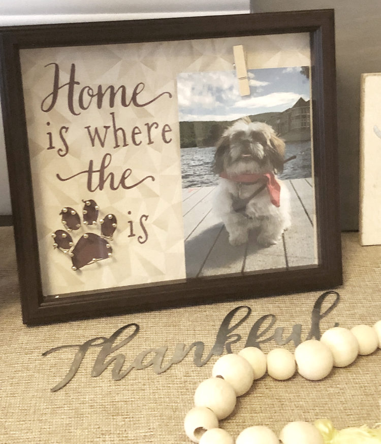 home is where the paw is dog photo frame