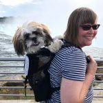 Puppy Summer Road Trip to New York & Canada — Part 3