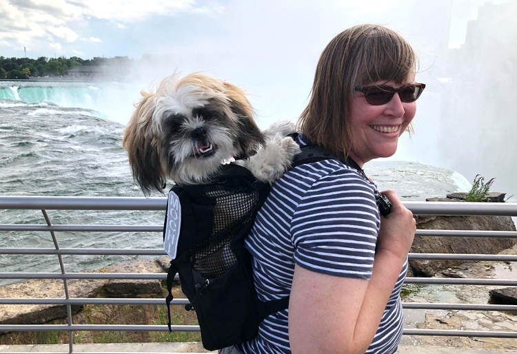 Shih Tzu puppy in a K9 Sport Sack at Niagara Falls
