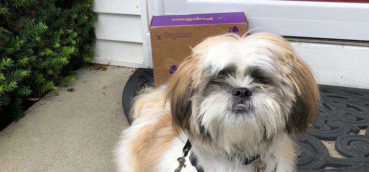 PupBox Subscription Box Review – 10 Months