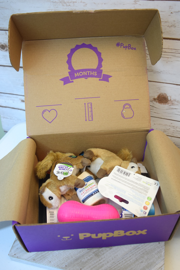 PupBox, a dog subscription box filled with dog treats and toys