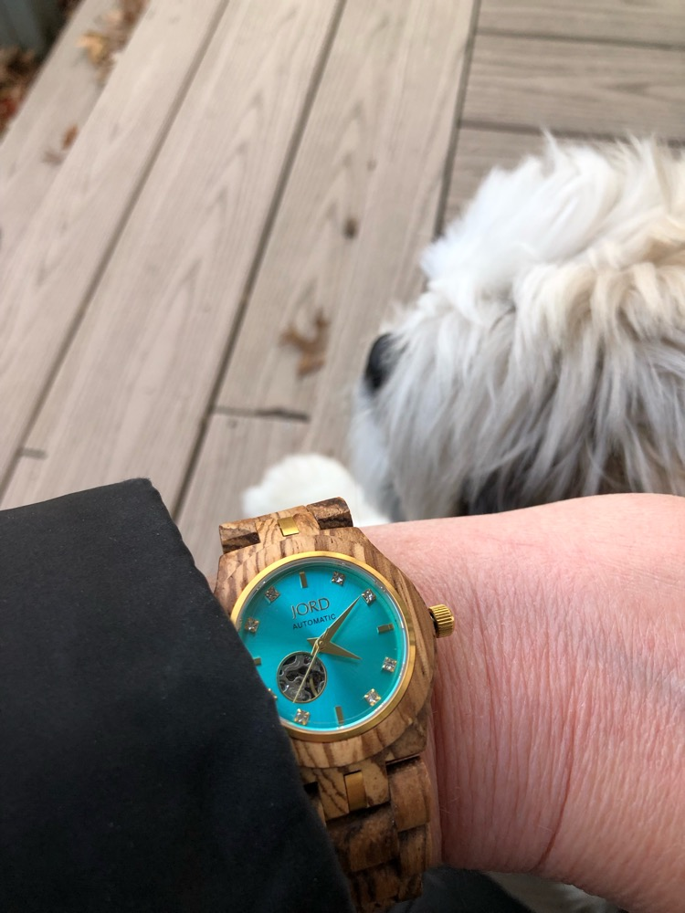 A Jord wood watch and a Shih Tzu puppy