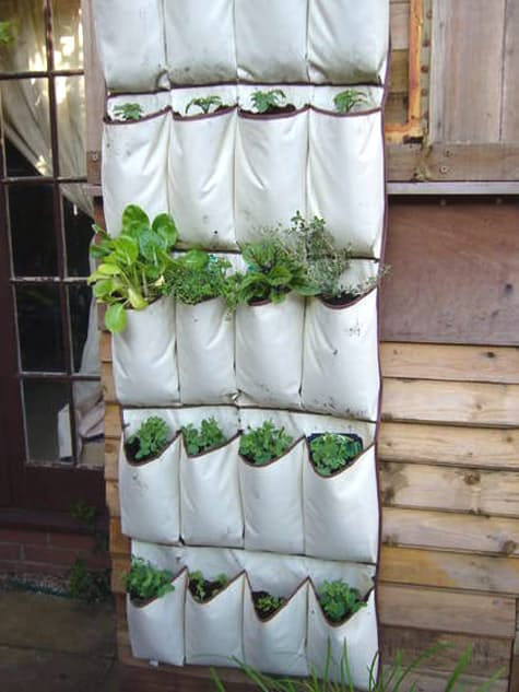 Shoe bag hanging garden -- a great way to garden in a tiny space