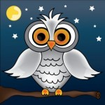 Night Owls Unite