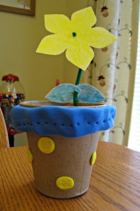 Kiwi Crate, flower, craft