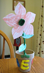 Kiwi, Crate, flower, clay