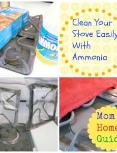 clean, stove, grates, ammonia