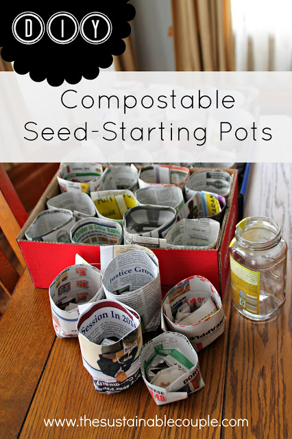 diy, compostable, seed, starting, pots