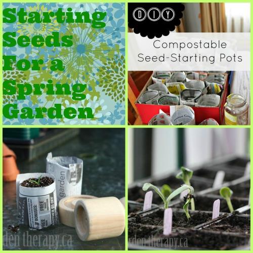start, seeds, spring, garden
