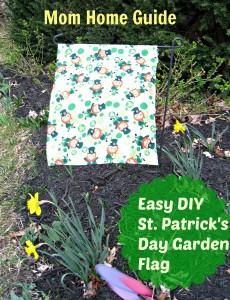 st. patricks day, garden, fllag