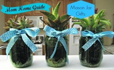 succulent, mason, jar, gifts