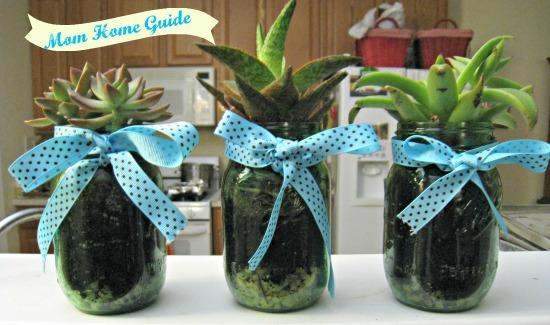 mason, jar, succulent