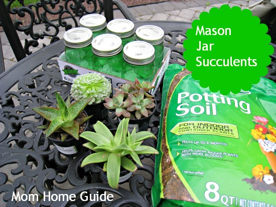 mom home guide, mason jar, succulents, potted, potting