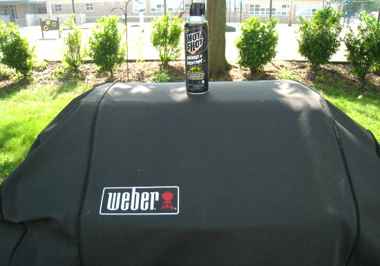 grill, weber