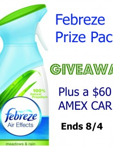 febreze, prize pack, giveaway, $60, AMEX card