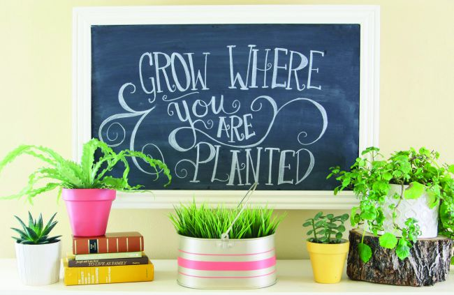 grow where you are planted home decor